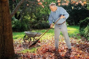 How gardening can be a healthier, enjoyable, and more rewarding alternative to exercise in the gym.