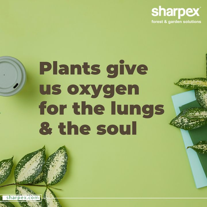 Sharpex Engineering,  WorldCancerDay, cancerday, Cancer, WorldCancerDay2020, cancerawareness, nevergiveup, IAmAndIWill, GardeningTools, ModernGardeningTools, GardeningProducts, GardenProduct, Sharpex, SharpexIndia