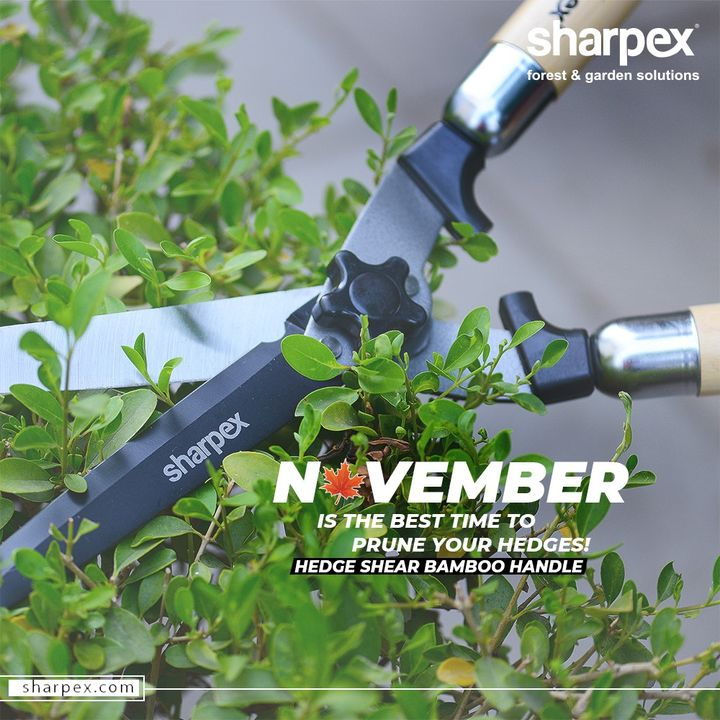 Sharpex Engineering,  PlantationMotivation, PlantYourDreams, JoyOfGardening, GardeningTools, ModernGardeningTools, GardeningProducts, GardenProduct, Sharpex, SharpexIndia
