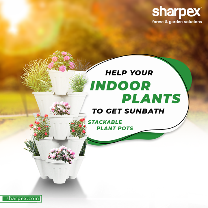 Adequate amount of Sunlight, air and proper ventilation are important for healthy growth of plants.  Help your indoor plants to get sunbath by placing them on the stylish stackable pots.  #GardeningTools #ModernGardeningTools #GardeningProducts #GardenProduct #Sharpex #SharpexIndia