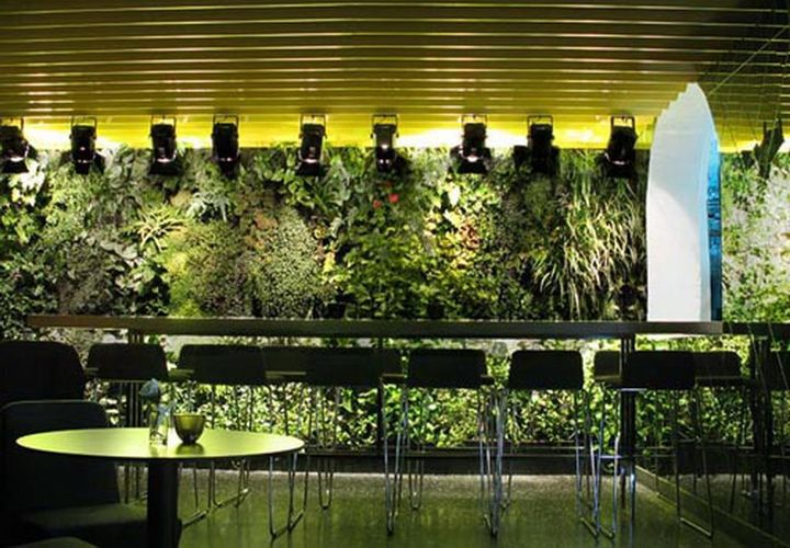 Ever wondered what it would be like to have a vertical garden on one of your walls inside your house? Perhaps, in the dining room?