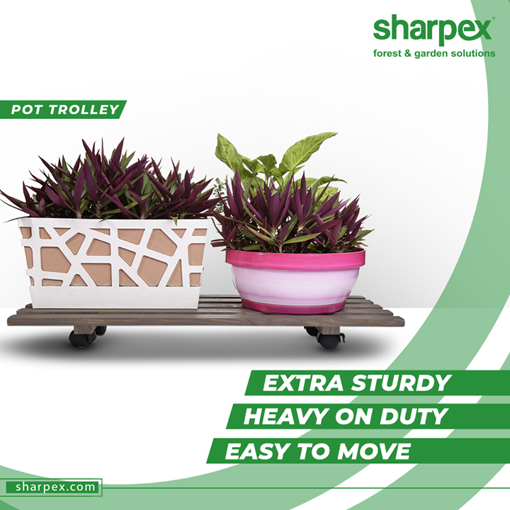 Take a look at the range of our extra sturdy, heavy on duty and easy to move pot trolley that will compliment your patio, garden, yard and deck.  #PotTrolley #GardeningTools #ModernGardeningTools #GardeningProducts #GardenProduct #Sharpex #SharpexIndia
