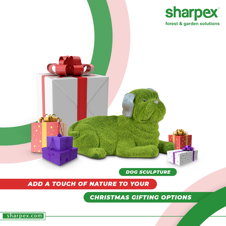 Christmas vibes are already in the town; Crown the festivity by adding a touch of nature to your Christmas gifting options with Sharpex Gardening Community.  #SharpexSolutions #GardeningSolutions #ModernGardeningTools #GardeningProducts #GardenProduct #Sharpex #SharpexIndia