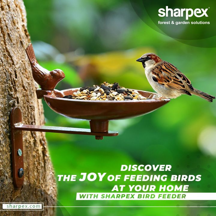 Be generous enough and discover the joy of feeding birds at your home.  Purchase the strong and sturdy metal bird feeders and place them in your balcony or backyard to welcome the feathered friends.  #BeAGardener #GardenLovers #GardeningAccessories #GardeningTools #ModernGardeningTools #GardeningProducts #GardenProduct #Sharpex #SharpexIndia
