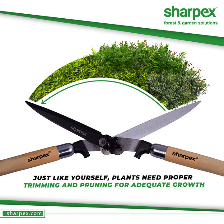 Pruning is a great preventative gardening and lawn care method! Just like yourself, plants need proper maintenance & pruning for adequate growth.  #GardeningTools #ModernGardeningTools #GardeningProducts #GardenProduct #Sharpex #SharpexIndia