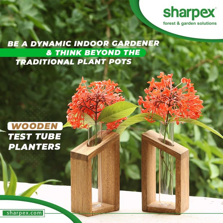 Sharpex Engineering,  garden