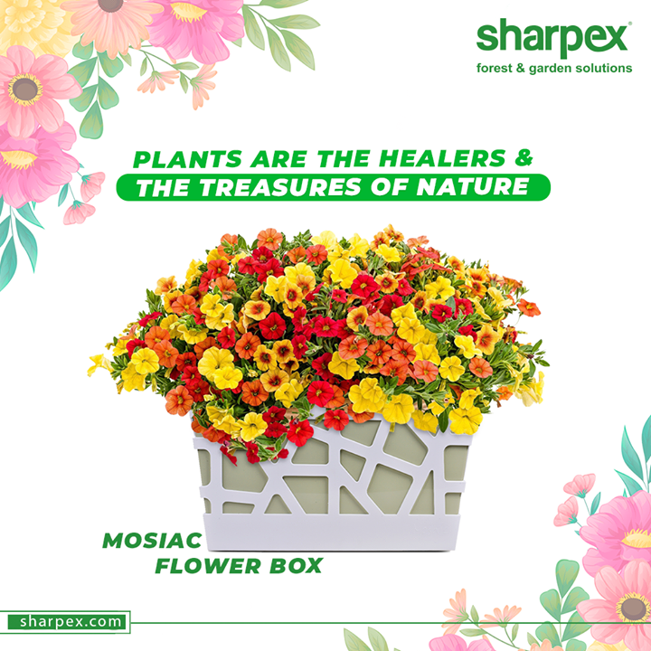 Sharpex Engineering,  AddADashOfGreeneryToDecor, Sharpex, IndoorPlants, ChairUpNChairsh, GardeningTools, ModernGardeningTools, GardeningProducts, GardenProduct, Sharpex, SharpexIndia