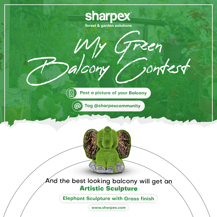 This Valentine's day evoke your love for greenery and take delight in flaunting your plants with our My Green Balcony Contest! Sharpex Gardening And Community greets all the garden-lovers like you and gives you the opportunity to exhibit your 'world of greenery'.  Feel the serene vibes of the greens; post a picture of your beautiful balcony making use of the hashtag #MyGreenBalcony Contest & stand a chance to win the beautiful artistic sculpture.  Winning will be simple but all you will need to do it: 1. Like & Follow Our page 2. Share the contest creative 3. Nominate your friends for My Green Balcony Contest  4. Share an image of your beautiful balcony in the