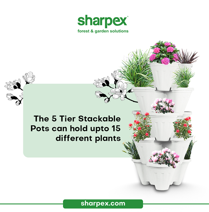 Sharpex Engineering,  garden, gardening, gardeningproducts, flower, flowerpot, Secateur, plants, gardenproduct, gardenpot, happy