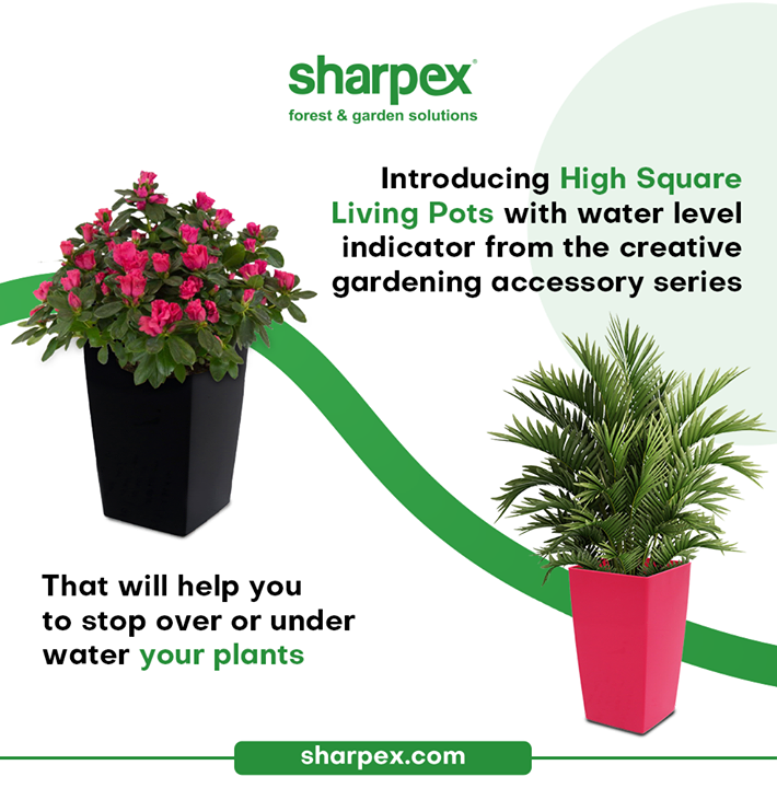 Introducing High Square Living Pots with water level indicator from the creative gardening accessory series.  These thoughtfully designed high square living pots will help you to stop over or under watering your plants & water them right.   Stick to your gardening ambition & bring home this elegant edition from Sharpex Gardening Community.  #HighSquareLivingPots #TallAndTrendyPots #CreativeGardeningAccessory #GardeningAccessories #GardeningTools #ModernGardeningTools #GardeningProducts #GardenProducts #Sharpex #SharpexIndia