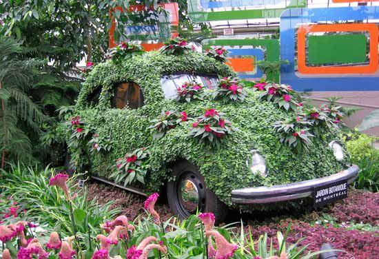 beetal botanical garden