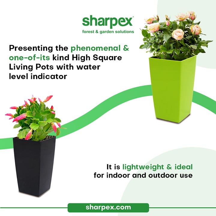 Sharpex Engineering,  HighSquareLivingPots, TallAndTrendyPots, CreativeGardeningAccessory, GardeningAccessories, GardeningTools, ModernGardeningTools, GardeningProducts, GardenProducts, Sharpex, SharpexIndia