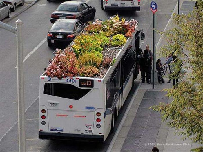 gardening on bus..