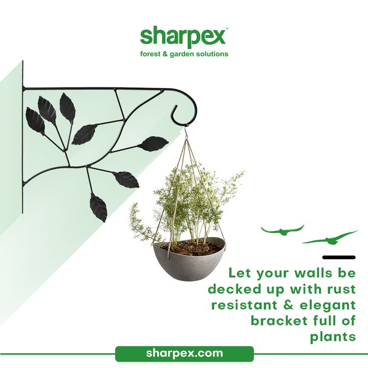 Say yes to elegance, plant decor & no to the products that do not stand the test of the times.  Let your walls be decked up with the elegant & rust resistant bracket full of plants. Let your fondness for aesthetic beauty accord with your love for gardening with Sharpex Gardening And Community.  #PlantBrackets #PlantHangingBrackets #CreativeGardeningAccessory #GardeningAccessories #GardeningTools #ModernGardeningTools #GardeningProducts #GardenProducts #Sharpex #SharpexIndia