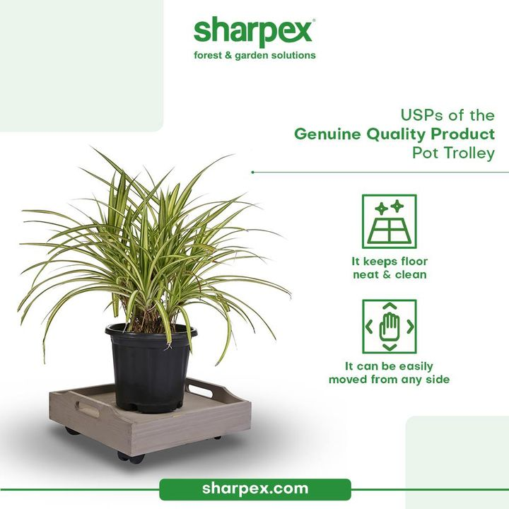 Sharing USPs of the Genuine Quality Product; Pot Trolley that's ideal for the indoor as well as the outdoor plants: - It can be easily moved from any side - Offering the ease of movement, the product helps to keep the floor neat & clean  Be a revolutionary gardener and bring home the modern gardening accessories from Sharpex Gardening And Community.  #CreativeGardeningAccessory #GardeningAccessories #GardeningTools #ModernGardeningTools #GardeningProducts #GardenProducts #Sharpex #SharpexIndia