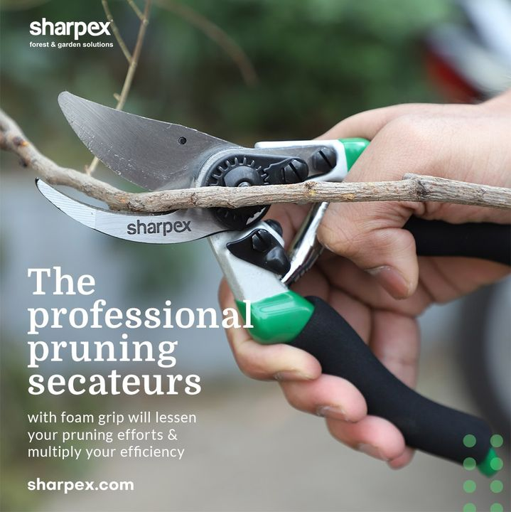 Gardening is a fun and relaxing way to get in touch with nature and the gardening activities also offer an array of health benefits.  Be a modern gardener who can prune with ease by bringing home the professional pruning secateurs with foam grip from Sharpex Gardening And Community that will lessen your pruning efforts & multiply your efficiency.  #CreativeGardeningAccessory #PruningSecateurs #GardeningAccessories #GardeningTools #ModernGardeningTools #GardeningProducts #GardenProducts #Sharpex #SharpexIndia