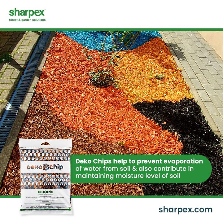 Are you that gardener who is fond of a colourful environ?   If yes, then get the organic and eco-friendly deko chips from Sharpex Gardening And Community that are both aesthetically appealing and functional.  #GardeningAccessories #GardeningTools #ModernGardeningTools #GardeningProducts #GardenProducts #Sharpex #SharpexIndia