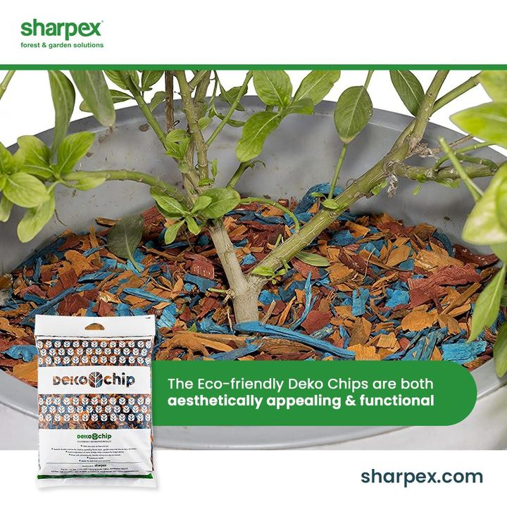 The eco-friendly deko chips are both aesthetically appealing and functionally sound. If you wish to deck up the pots in an ideal way while helping the plants to retain moisture of the soil then ensure trying this product from Sharpex Gardening And Community.  #GardeningAccessories #GardeningTools #ModernGardeningTools #GardeningProducts #GardenProducts #Sharpex #SharpexIndia