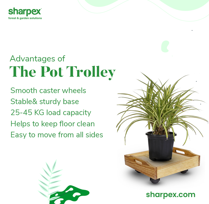 The advantages of this elegant pot trolley are too many!  The smooth caster wheels make it more portable while the stable & sturdy base adds to its durability. It has the load capacity of 25-45 KG and yet is easy to move from all sides.   If you wish to opt for he right kind of plant decor while keeping the floor clean then this product will be ideal for you.  #GardeningAccessories #GardeningTools #ModernGardeningTools #GardeningProducts #GardenProducts #Sharpex #SharpexIndia