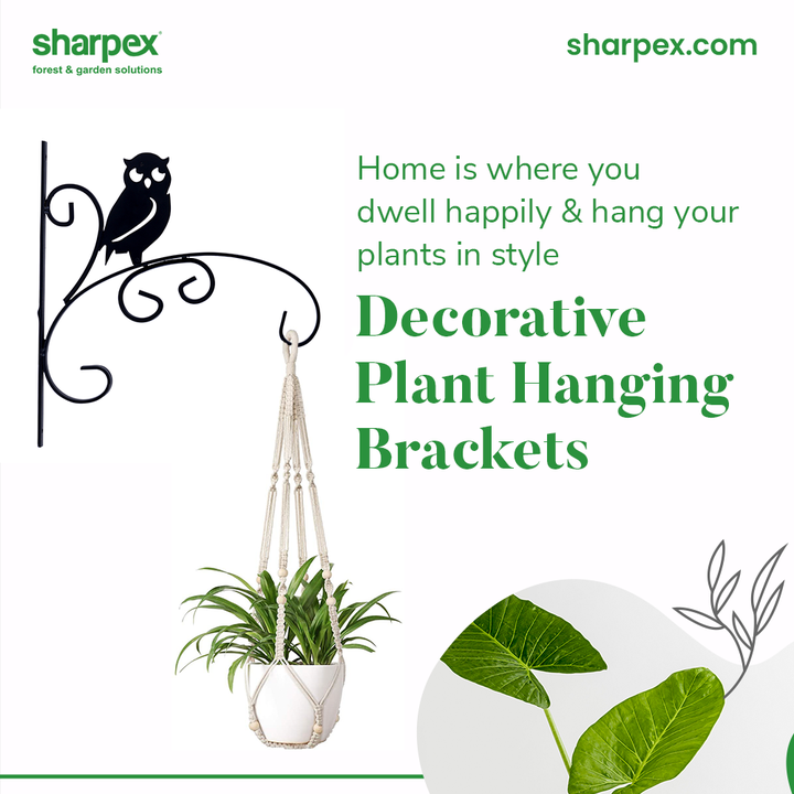 Home is where you dwell happily and hang your plants in style by making use of the decorative plant hanging brackets.  Brighten up your space by adorning it in the right way with the lush green indoor plants.  #GardeningAccessories #GardeningTools #ModernGardeningTools #GardeningProducts #GardenProducts #Sharpex #SharpexIndia