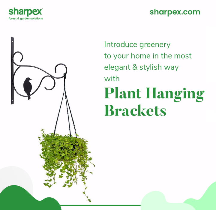 Be an admirer of the gorgeous greens!  Introduce greenery to your home in the most elegant and stylish way with the exclusive range of plant hanging brackets from Sharpex Gardening And Community.  #GardeningAccessories #GardeningTools #ModernGardeningTools #GardeningProducts #GardenProducts #Sharpex #SharpexIndia