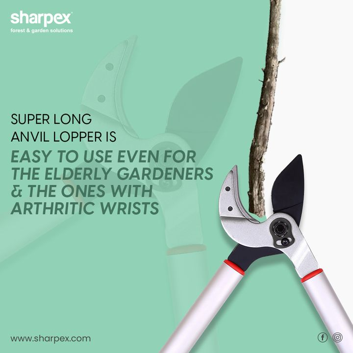 Sharpex Engineering,  BhaiDooj, Diwali2019, BhaiDooj2019, Celebration, FestiveSeason, IndianFestivals, BrotherSister, HappyBhaiDooj, SharpexIndia, GardeningTools, ModernGardeningTools, GardeningProducts, GardenProduct, Sharpex