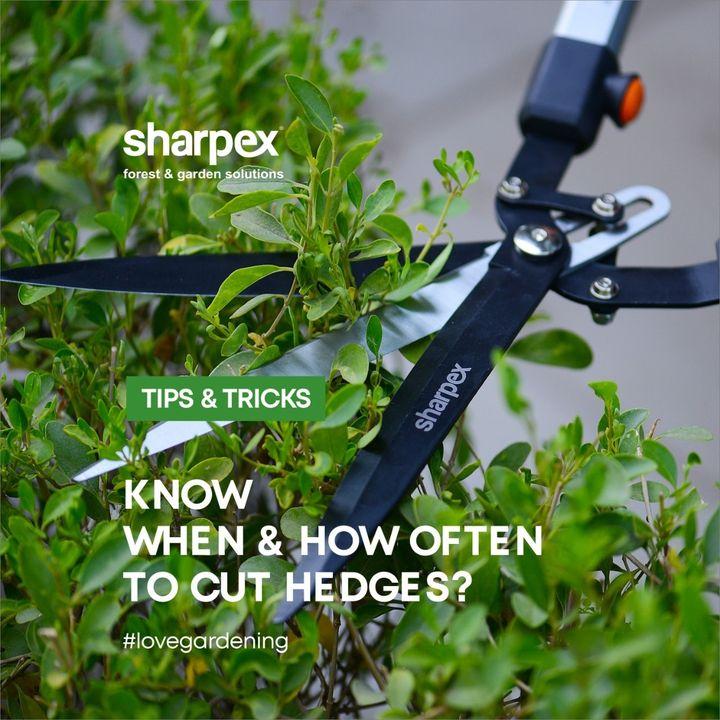 Sharpex Engineering,  sharpexindia, explore, gareden, GardeningAccessories, GardeningTools, ModernGardeningTools, GardeningProducts, GardenProducts, Sharpex, SharpexIndia, joyofgardening