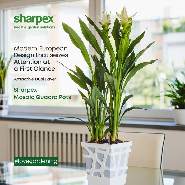 Sharpex Engineering,  WoodPlantStand, CreativeGardeningAccessory, GardeningAccessories, GardeningTools, ModernGardeningTools, GardeningProducts, GardenProducts, Sharpex, SharpexIndia