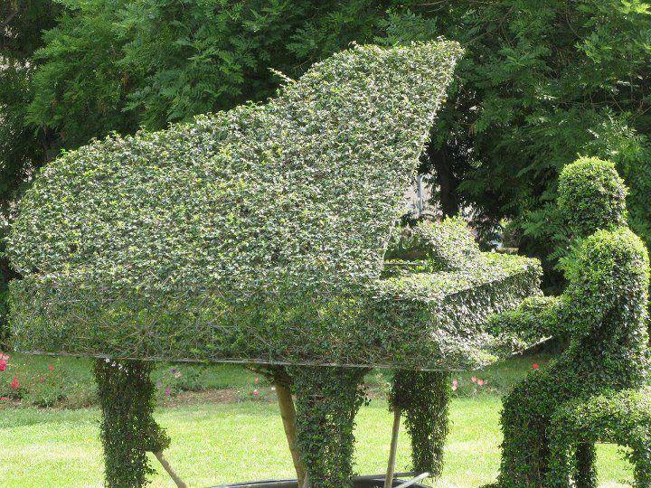 Garden Creativity!