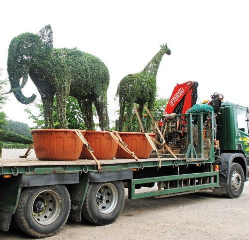 Elephant and Giraffe pots.