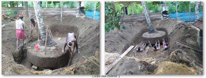 In Kerala, when the laborers are setting up a new establishment, they never chop down the trees that stand on the property. Instead, they dig a hole around the tree and push it aside along with its roots.  It's actions as simple and emotive as this that eventually make a huge difference.