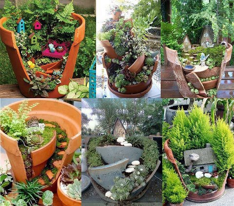 make your own small garden, choose one of them!!
