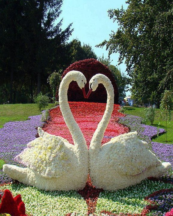 Beautiful Flower Art!