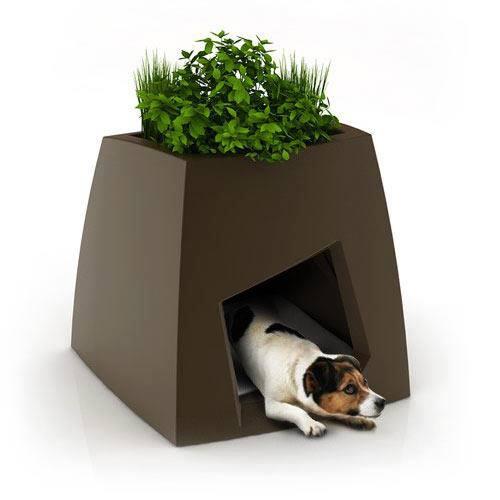 Indoor Garden pot that does double duty!