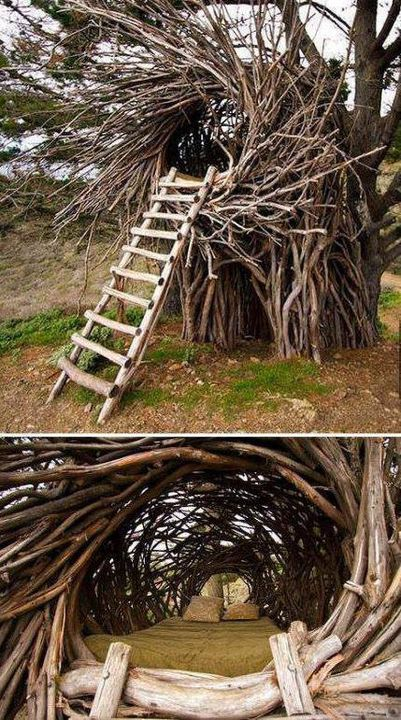 Nature House! Click on pic to explore the inside view.