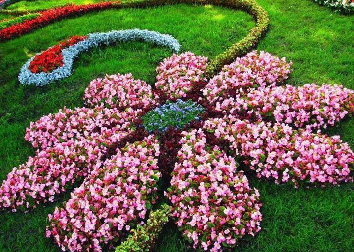 Flower design garden!