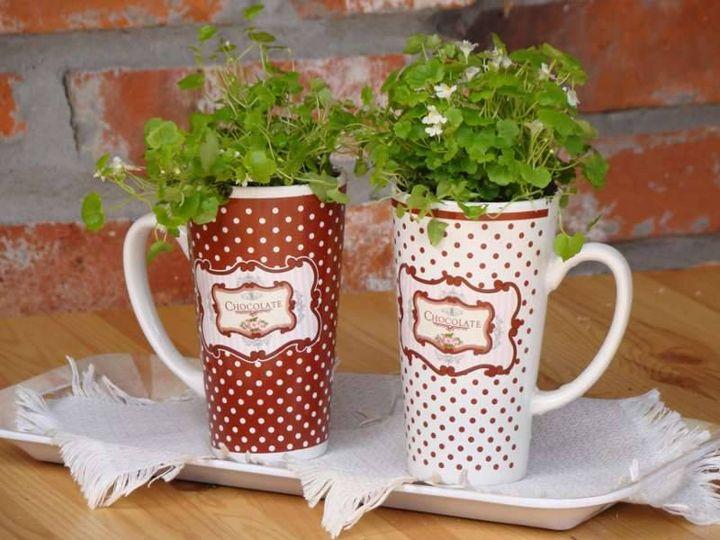 Indoor Herb Gardening http://ecosnobberysucks.com/2013/04/indoor-herb-gardening/