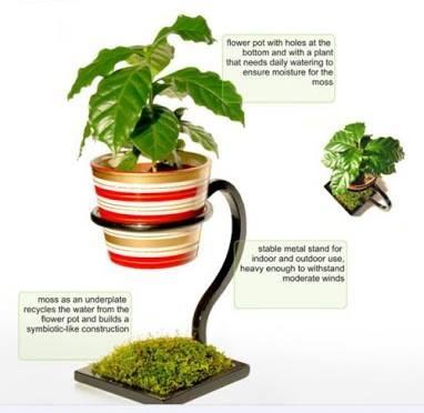 Creative #plant #stand!!