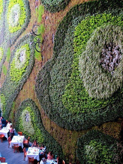 green wall!