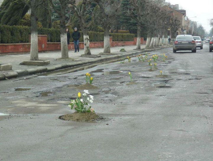 Someone planted tulips in potholes in Kolomiya, Ukraine as a protest against road conditions. http://iravaban.net/en/30552.html