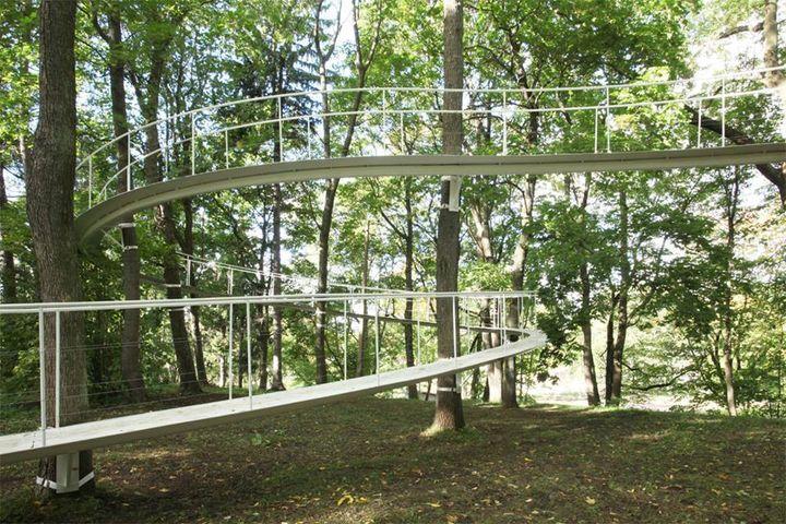 raised woodland walk in Estonia