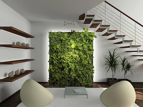 #Indoor vertical garden.!!!
