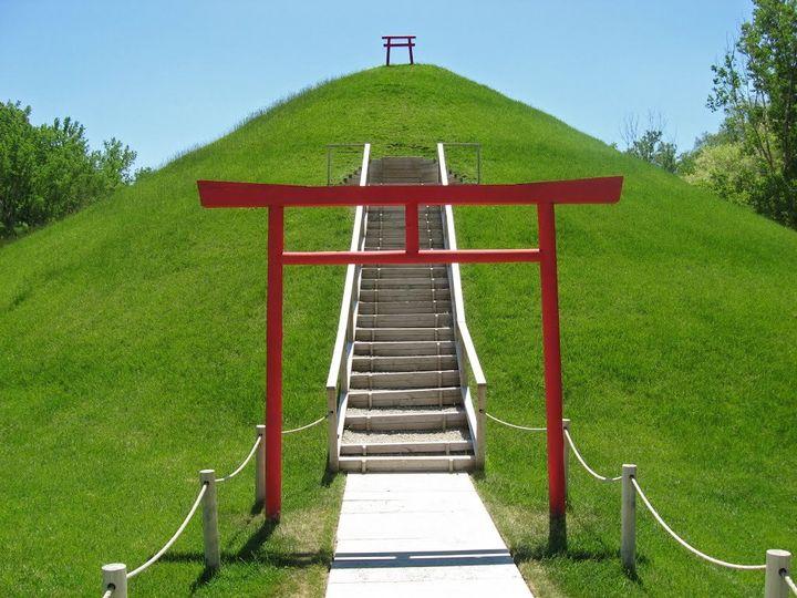 Real japanese Garden..!!!  #garden  #gardening #realGarden