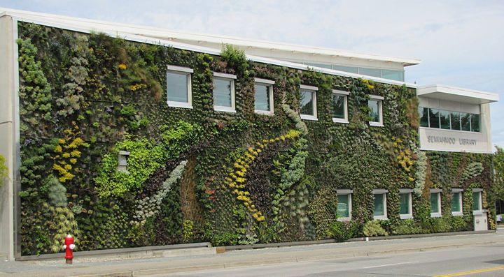 Vertical green wall landscaping and garden decorate idea..!!!  #garden #gardening #landscap #verticlegarden