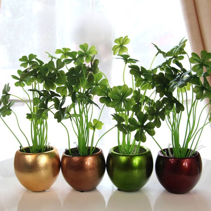 Make your home more beautiful with awesone flowerpots...  #garden #homegarden #flower #flowerpots...!!!