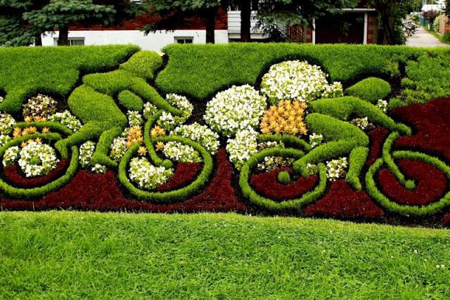 Sharpex Engineering,  gardening, decoration, gardeningideas