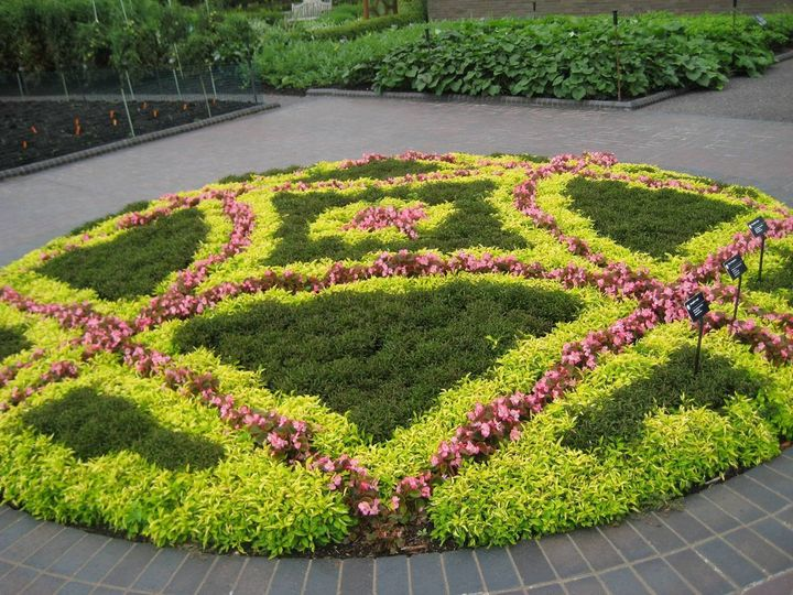 #gardening #garden #decor