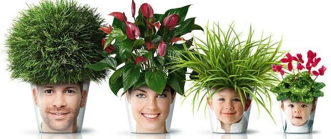 Nice family flowerpot.  #flowers #flowerpot #garden #gardening