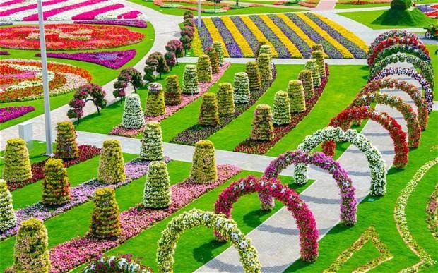 Sharpex Engineering,  realgarden, garden, gardening