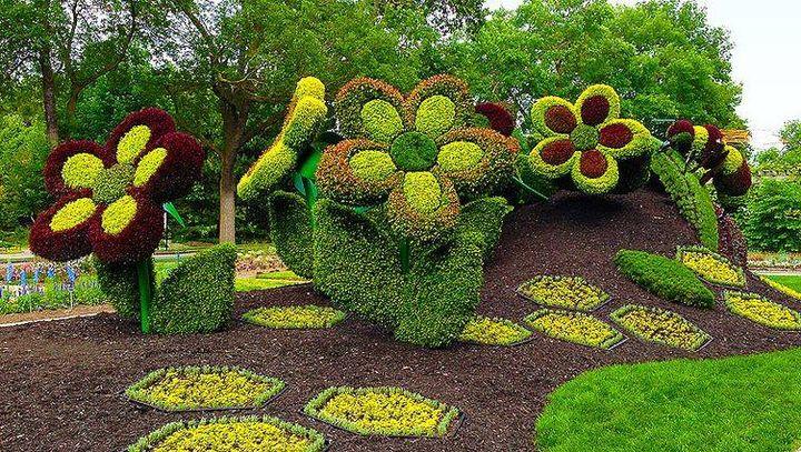 Sharpex Engineering,  gardening, garden, flowers